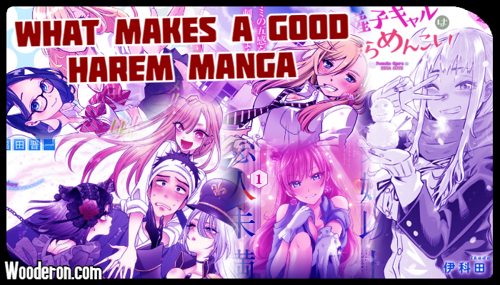 What makes a good Harem Manga