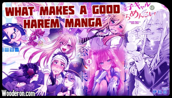 What makes a good HaremManga